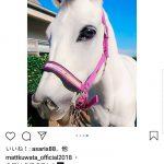桑田の息子Mattくん、馬にMatt加工を施しMattくんが生きるメルヘン世界の馬に変えてしまう!